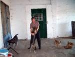 Робітниця Притулку Марія Нагорна доглядає кішок по вихідних